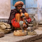 India, travel, Asia, international, Snake Charmer, Varanasi, India