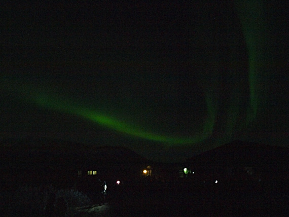 northern lights appear over the ocean