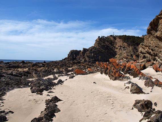 Sunny day at the black rock beach, Australia